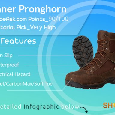 Superb in 2018? Danner Pronghorn Hunting Boots Review